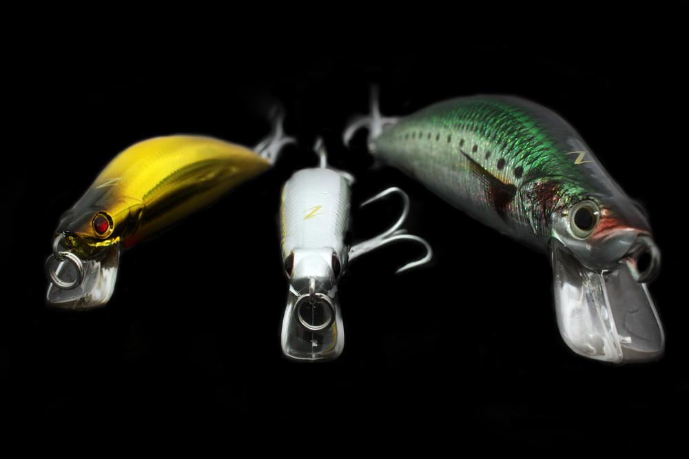 Wilson Fishing – Brisbane River Threadfin Salmon