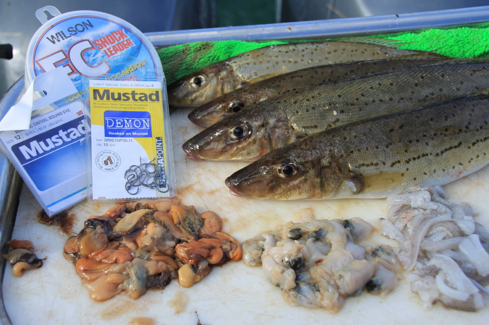 TIPS FOR CATCHING VICTORIAN WHITING