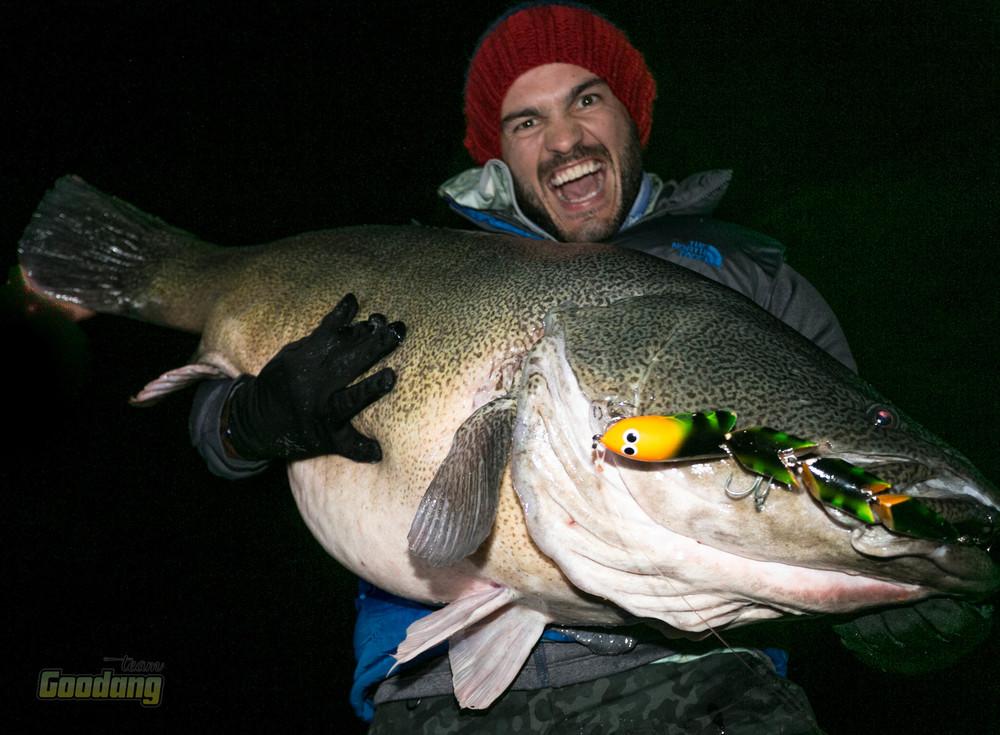 Wilson Fishing Mega Murray Cod
