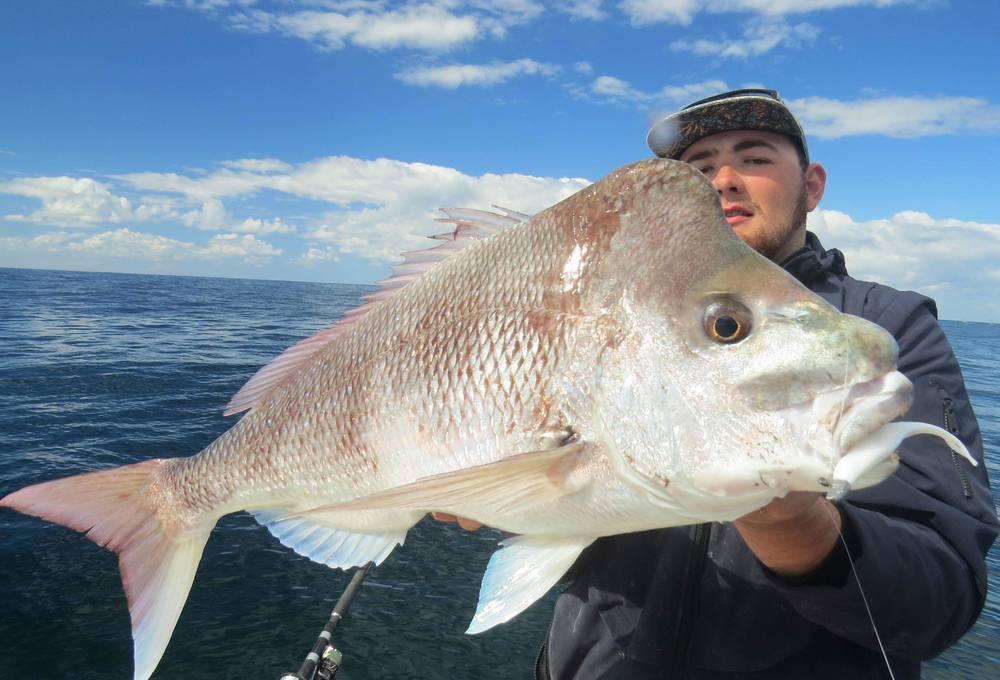 Wilson Fishing Mustad Darter Jigheads